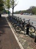 Un Q de bicicletas Imagen de archivo