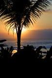 Un rêve de coucher du soleil amoureux Image libre de droits