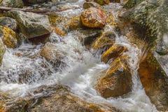 Un río corrido a través Imagenes de archivo