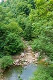 Un río de la montaña con flujos pedregosos de las orillas de un lago a través de una garganta con el bosque verde denso foto de archivo libre de regalías