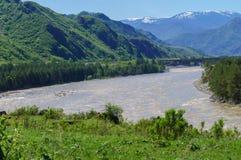 Un río de la montaña que fluye entre los bancos del bosque Fotografía de archivo