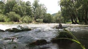 Un río en Bulgaria almacen de metraje de vídeo