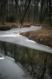 Un río en un bosque del invierno Foto de archivo libre de regalías