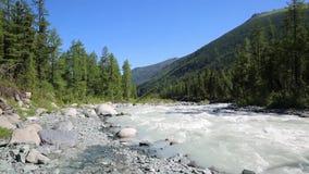 Un río rápido de la montaña almacen de metraje de vídeo