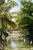 Un río y un puente en las Bahamas Imágenes de archivo libres de regalías