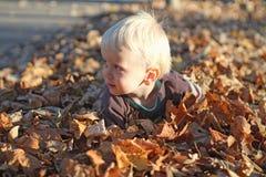 Un ragazzino che gioca nel mucchio della foglia Immagine Stock Libera da Diritti