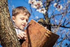 Un ragazzino che legge un libro su un albero del fiore Immagini Stock