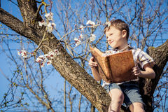 Un ragazzino che legge un libro su un albero del fiore Fotografia Stock