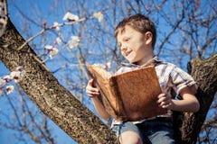 Un ragazzino che legge un libro su un albero del fiore Fotografia Stock Libera da Diritti