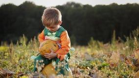 Un ragazzino in costume della zucca che tiene una zucca in mani stock footage
