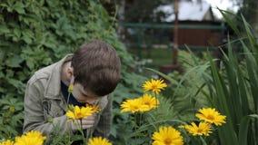 Un ragazzino nel giardino sta fiutando i fiori gialli Allergia, concetto della medicina video d archivio