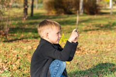 Un ragazzino prende le immagini sul telefono nel parco un giorno soleggiato immagine stock