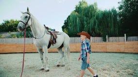 Un ragazzino viene allo ione del cavallo l'area nel giorno soleggiato 4K archivi video