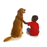 Un ragazzo ed il suo cane. Immagini Stock