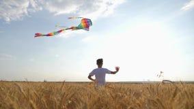 Un ragazzo funziona attraverso il campo al tramonto con un aquilone che sorvola la sua testa Un sogno di chidhood Scherza i gioch archivi video