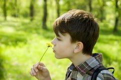 Un ragazzo nel parco fiuta un fiore del dente di leone, ritratto del primo piano, nel profilo Concetto libero di allergia Fotografia Stock Libera da Diritti