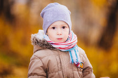 Un ragazzo nella foresta di autunno Fotografia Stock Libera da Diritti