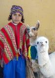 Un ragazzo peruviano con i lama in Cusco nel Perù Immagine Stock Libera da Diritti