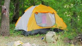 Un ragazzo in una tenda nella foresta archivi video