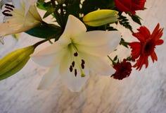 Un ramo brillante en el mármol fotos de archivo libres de regalías