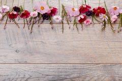 Un ramo de cosmea o de cosmos de las flores blancas con la cinta en los tableros blancos Flores amarillas del jardín sobre backgr Imágenes de archivo libres de regalías