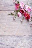 Un ramo de cosmea o de cosmos de las flores blancas con la cinta en los tableros blancos Flores amarillas del jardín sobre backgr Imagenes de archivo