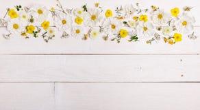 Un ramo de cosmea o de cosmos de las flores blancas con la cinta en los tableros blancos Flores amarillas del jardín sobre backgr Imagen de archivo libre de regalías