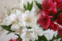 Un ramo de flores Fotografía de archivo
