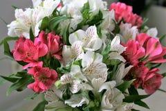Un ramo de flores Imagenes de archivo