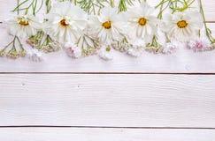 Un ramo de flores blancas en los tableros blancos Fotografía de archivo libre de regalías