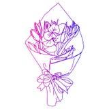 Un ramo de flores en un paquete de papel, aislado en un fondo blanco Tarjeta con un ramo de tulipanes y de eucalipto Fotografía de archivo