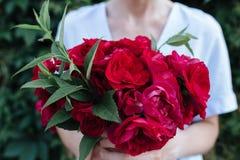 Un ramo de flores rojas fotos de archivo