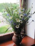 Un ramo de flores salvajes Fotos de archivo libres de regalías