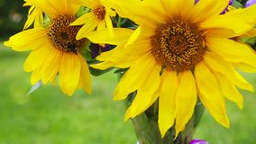 Un ramo de girasoles y de abeja amarillos