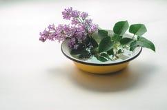 Un ramo de lila púrpura fresca en un amarillo esmaltó el cuenco Foto de archivo libre de regalías