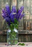 Un ramo de lupines en un tarro de cristal Imágenes de archivo libres de regalías
