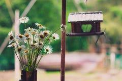 Un ramo de margaritas en un travesaño de la ventana en una casa de campo Fotos de archivo