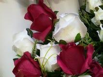 Un ramo de rosas rojas y blancas Imágenes de archivo libres de regalías