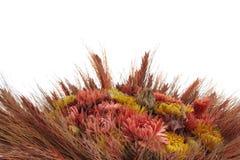 Un ramo de trigo y de flores fotografía de archivo libre de regalías