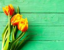 Un ramo de tulipanes imagen de archivo libre de regalías
