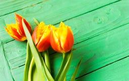 Un ramo de tulipanes Foto de archivo