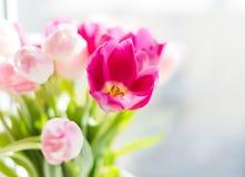 Un ramo de tulipanes en un florero Foco selectivo suave fotos de archivo libres de regalías