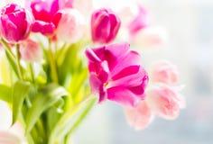 Un ramo de tulipanes en un florero Foco selectivo suave foto de archivo