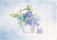 Un ramo de violetas azules ilustración del vector