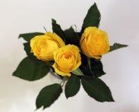 Un ramo hecho de rosas amarillas brillantes hermosas Imagen de archivo libre de regalías