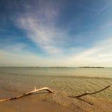 Un ramo sulla spiaggia Fotografia Stock