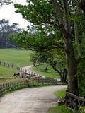 Un rancho hermoso Fotografía de archivo libre de regalías