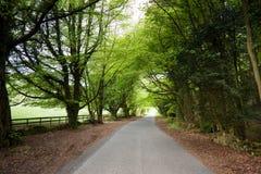 Un raod dans Cotswold Image libre de droits