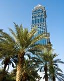 Un rascacielos y palmeras, Dubai, UAE Fotos de archivo