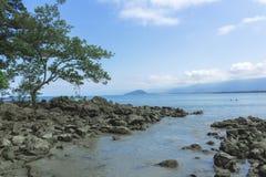 Un rastro de las rocas de Bora Bora Imagenes de archivo